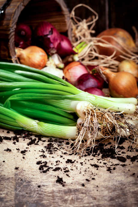 Types of Onions: This versatile vegetable grows all over the world and can be stored for months after harvest. You'll find onions in all types of cuisine, and they can be cooked in a multitude of ways.