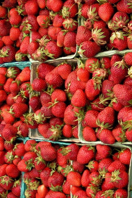 A Year of Food Festivals: California is known for its strawberry fields that stretch from San Diego to San Francisco. The California Strawberry Festival is held in Oxnard, north of Los Angeles.